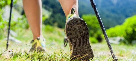 Nordic Walking in herrlicher Natur