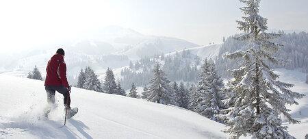 Schneeschuhwandern durch die Natur Bayerns